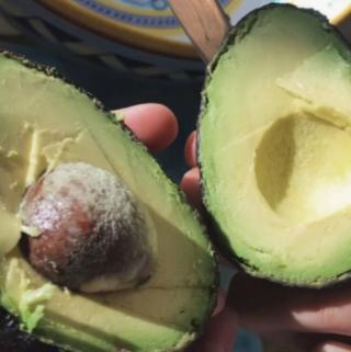 Avocados can balance hormones